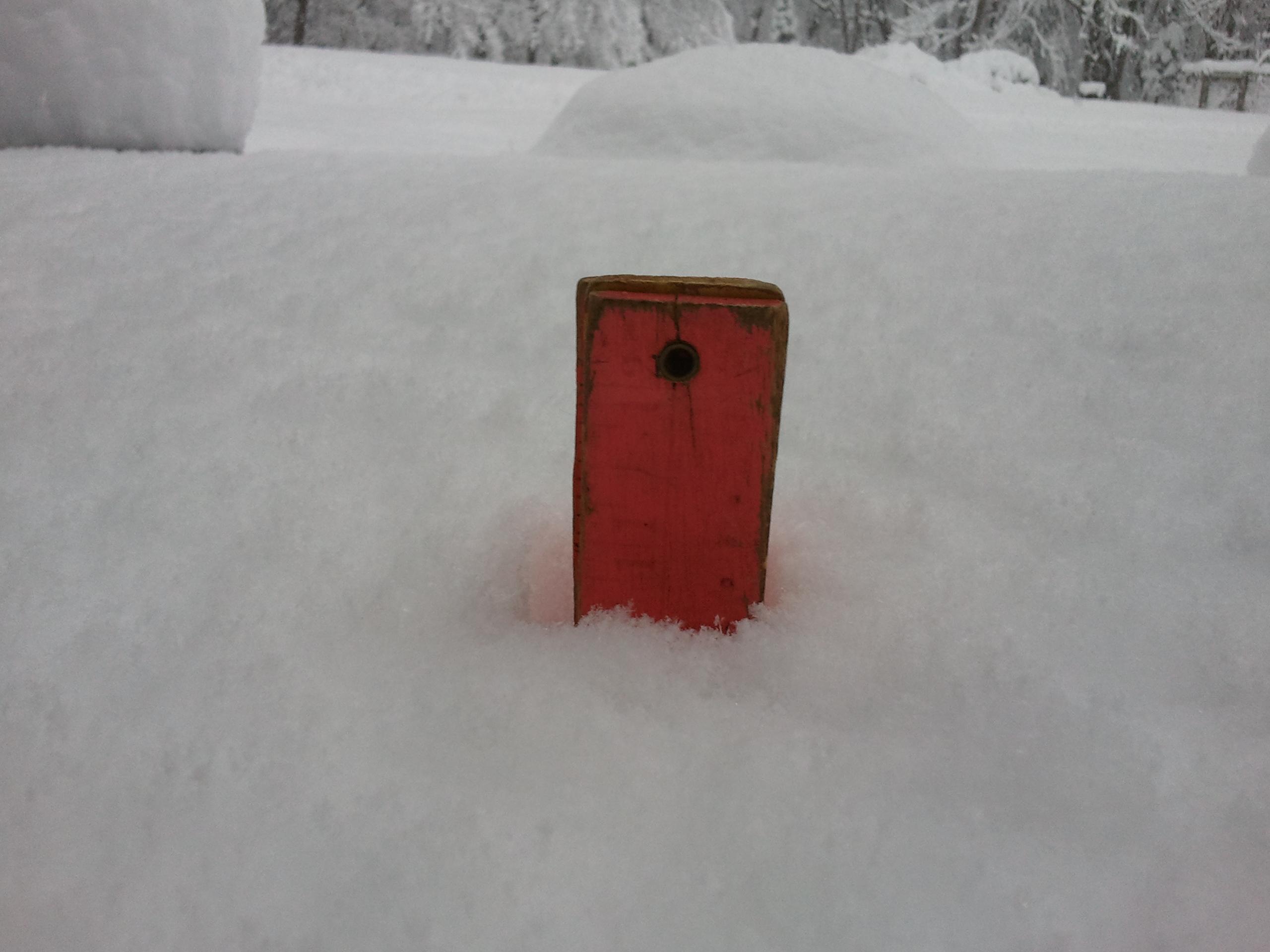 snow storm u2013 va backyard shooter