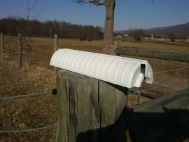 Sitting on the fence post to dry