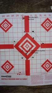 SKS Target